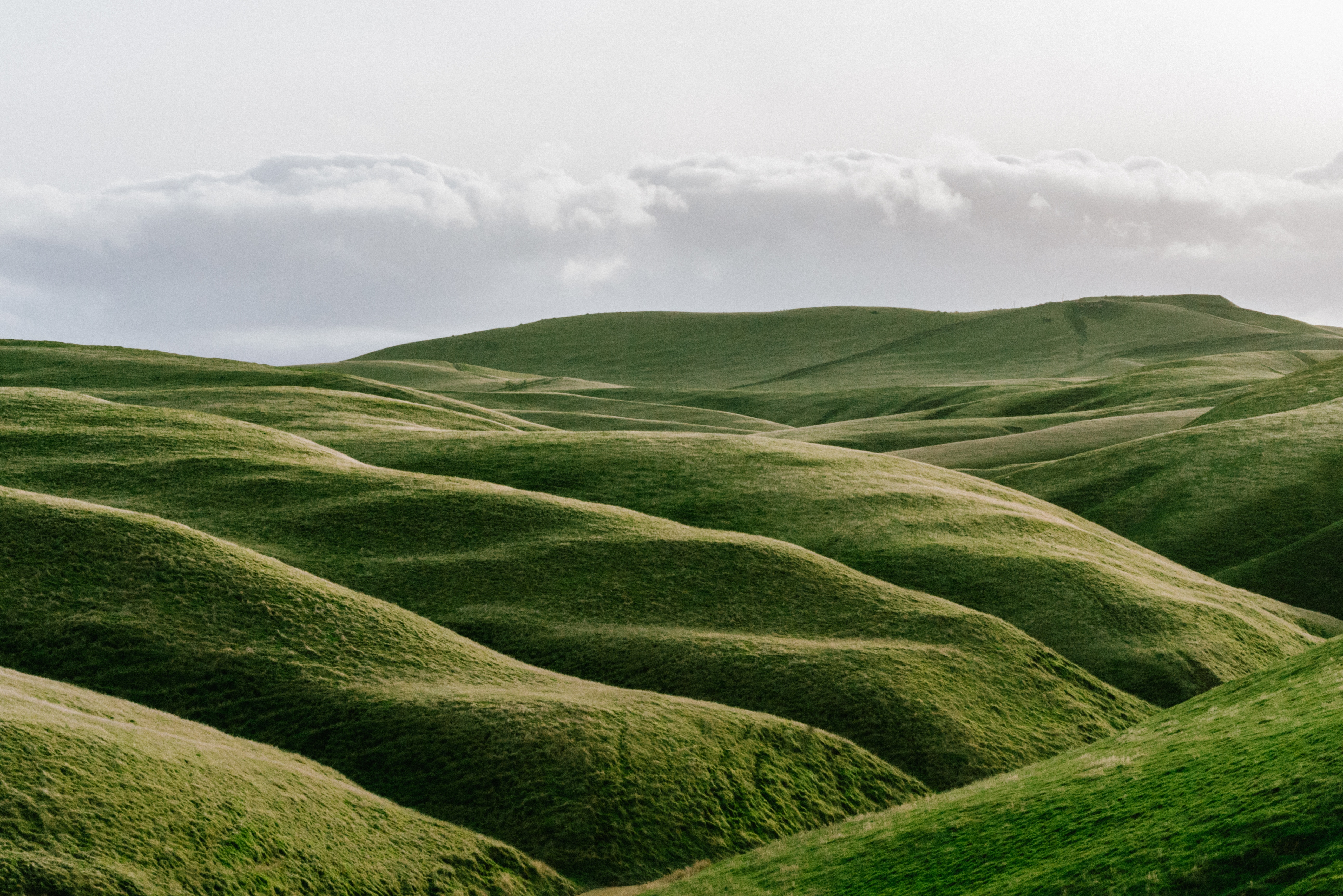 Beautiful green hills representing the experience of using Mailchimp, email automatisation tool, which often times feels like a bumpy ride.